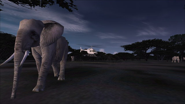 Microsoft Flight Simulator X - Bell 206B - an elephant in Africa